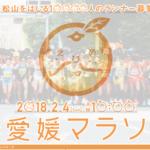 第56回愛媛マラソンの案内が届きました。